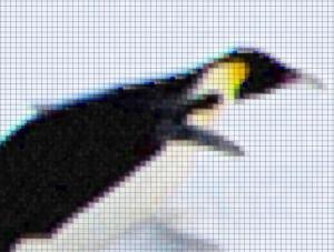 penguin-lowResolução e escalas de cores